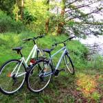 Cyklotrasa v Malých karpatoch