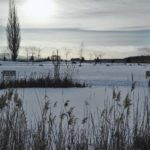 Malvázia Zimný park