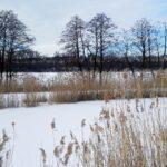Zamrznuté jazerá v Malých Karpatoch
