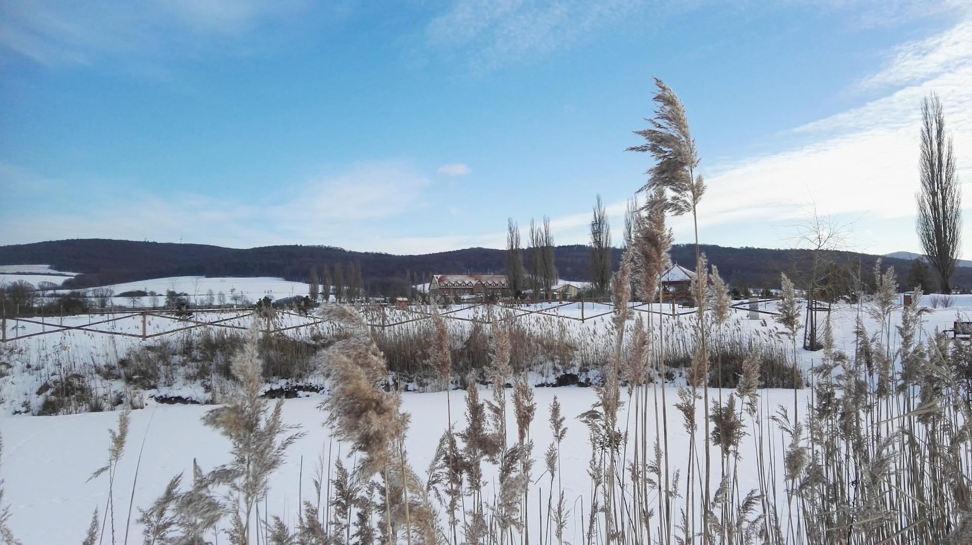 Malvazia park v zime